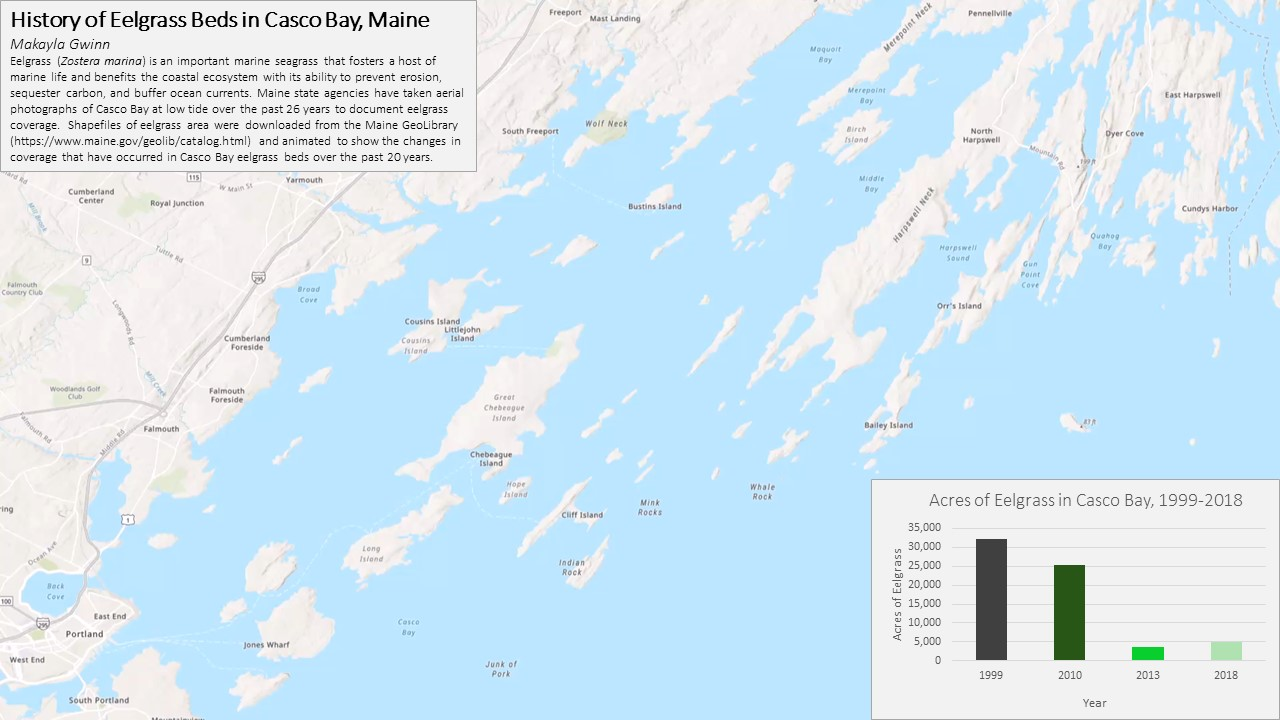 History of Eelgrass Beds in Casco Bay, Maine map
